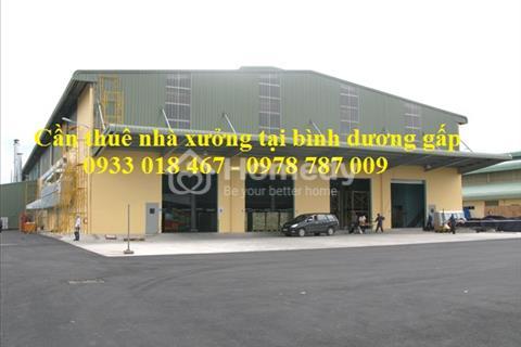 Cần thuê nhà xưởng gấp tại huyện Tân Uyên, Bình Dương