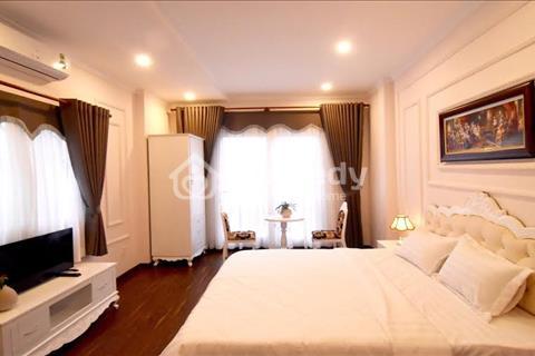 Cho thuê căn hộ dịch vụ Quận 1, nội thất đẹp, gần trung tâm hành chính lớn
