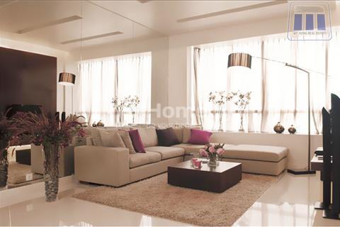 Cho thuê giá tốt trong khu căn hộ cao cấp Sunrise City Quận 7, đường Nguyễn Hữu Thọ đối diện Lotte