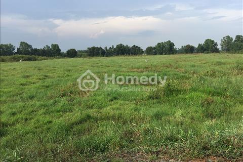 Bán đất mặt tiền tỉnh lộ 8, diện tích 80 x 270, giá 1,9 triệu/m2, sổ hồng riên, vị trí đất đẹp.