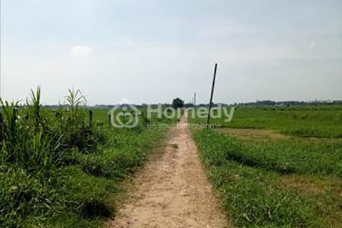 Bán đất nông nghiệp ở xã Tân Thạnh Đông, diện tích 1.700 m2 (38 x 48), giá 1,36 tỷ