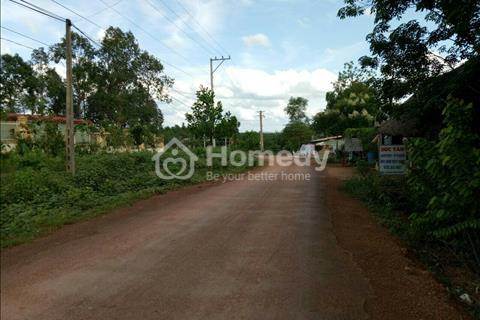 Bán đất trang trại Đồng Tiến, Đồng Phú, Bình Phước