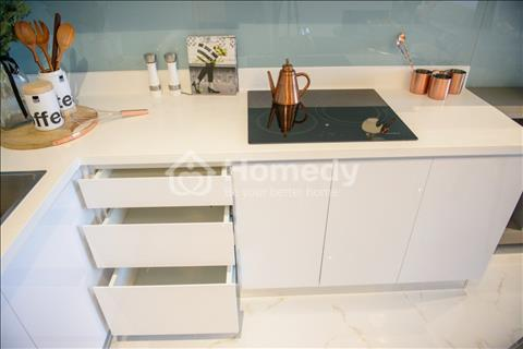Mua căn hộ Minipenthouse ngay Phú Mỹ Hưng chỉ với 320 triệu - Thanh toán 1 %/tháng - Full nội thất