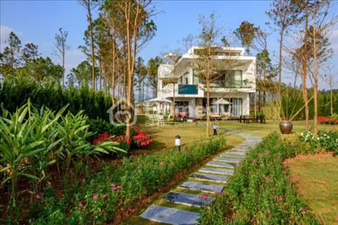 Biệt thự hoa hồng Skylake Villa, sống sang trọng giữa thiên nhiên tại Flamingo Đại Lải Resort