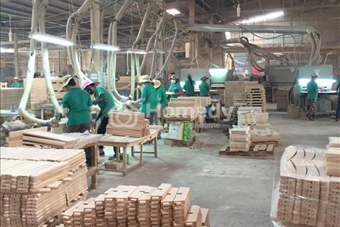 Gia đình sang Mỹ định cư cần bán gấp xưởng sản xuất gỗ