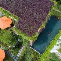 Hoàng Oanh Villa - Flamingo Đại Lải Resort - biệt thự tường xanh mái xanh
