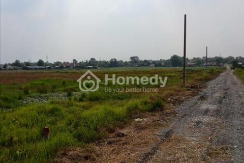 Cần bán lô đất làm vườn ở Tân Thạnh Đông, Củ Chi. Diện tích 3.500 m2 (53 x 67)