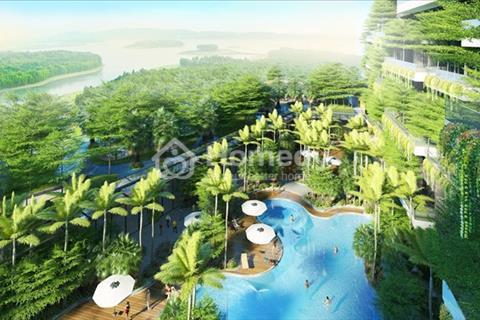 Bán lại biệt thự Forest Villa R337 diện tích 140m2 Flamingo Đại Lải Resort - giá 3,3 tỷ