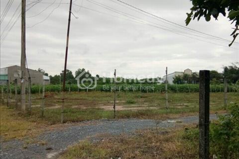 Bán gấp đất Phú Đông Nhơn Trạch gần dự án Vingroup, giá rẻ hơn thị trường, SHR chính chủ