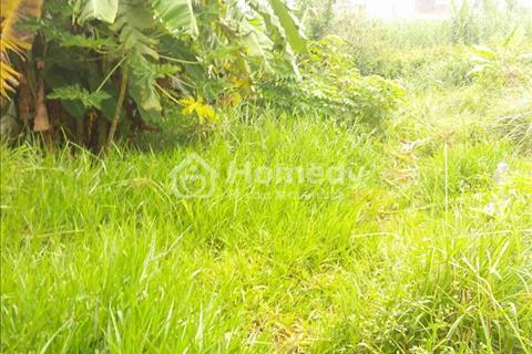 138 m2 đất thổ cư Long Thới Nhà Bè 11,7tr/m2, đất 2 mặt tiền hẻm chính Nguyễn Văn Tạo