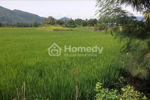 Cần bán lô đất ruộng xã Diên An , ngay cổng chào, cách 23/10 10m, cách trung tâm thành phố 3km