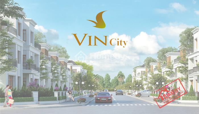 vincity dan phuong
