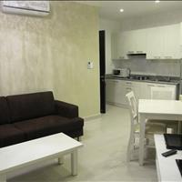 Cho thuê căn hộ International Plaza, Quận 1, 55m2 - 1PN/1wc tọa lạc tại khu phố Tây Phạm Ngũ Lão