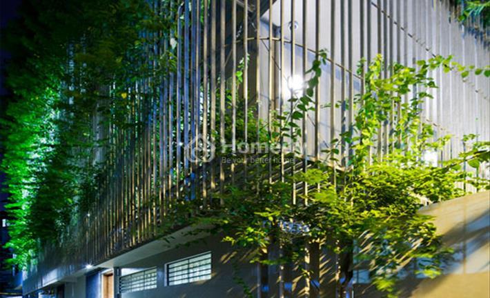 """Biến nhà cũ thành """"biệt thự xanh"""" công trình khiến giới kiến trúc sư không ngừng sửng sốt"""