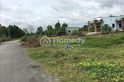Đất kho xưởng 480 m2 Chính chủ,Mặt Tiền hương lộ 11, Quy Đức, Bình Chánh