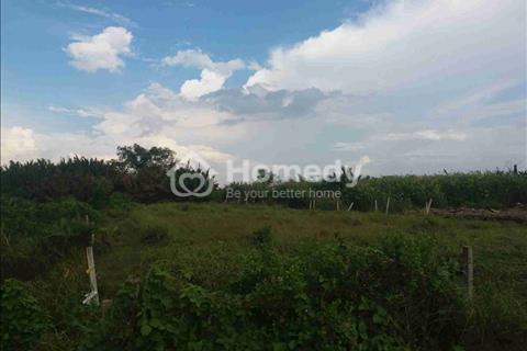Cần bán gấp 5 công đất ruộng (5.000 m2) hẻm Lê Văn Lương, Nhơn Đức giá 1,8 tỷ