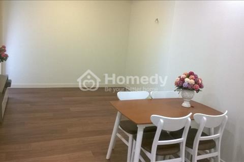 Cho thuê căn hộ chung cư Mipec 229 Tây Sơn 2 phòng ngủ