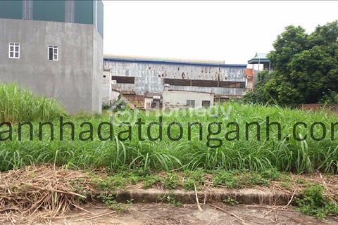 Đất đấu giá Nguyên Khê, sát quốc lộ 3, giá 15 triệu/m2