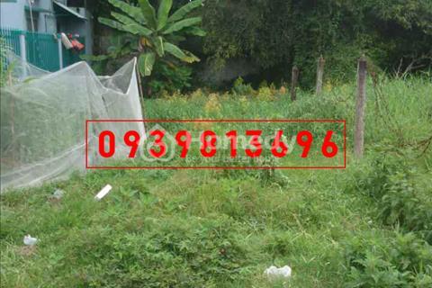 Cần bán lô đất mặt tiền đường nhựa nhánh Bến Than, xã Hòa Phú, diện tích 1.525m2, giá 5,3 tỷ