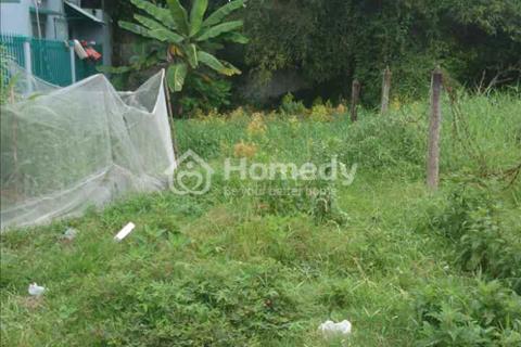 Bán đất thổ vườn ở xã Hòa Phú, diện tích 600m2, giá 1,95 tỷ, dường nhựa 6m, có 300m2 thổ cư