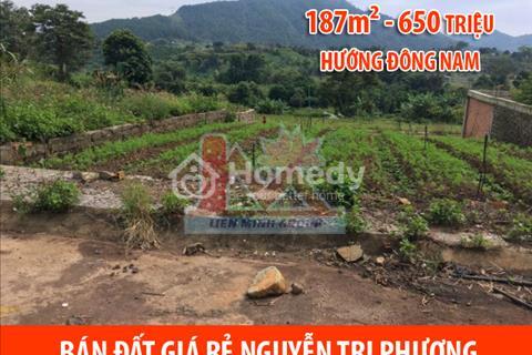 Bán đất thổ cư Nguyễn Tri Phương – Đức Trọng.