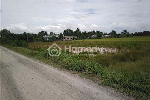 Bán gấp đất ruộng đã được cấp phép lên đất lên vườn 5.500m2 xã Tân Nhựt Bình Chánh