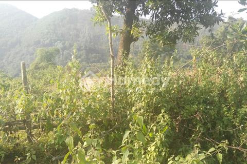 Chỉ 150 triệu/sào có ngay lô đất làm trang trại cực đẹp, chỉ cách trung tâm Hà Nội 30 phút đi ô tô