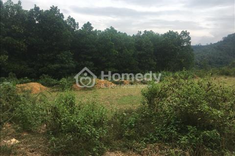 Chính chủ bán lô đất 40 sào tại Tiến Xuân, đất đẹp vô cùng, phong cảnh hữu tình, chỉ 140 triệu/sào