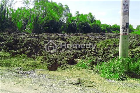 Đất xây xưởng Phong Phú - Bình Chánh 989m2 chỉ 3,5 tỷ