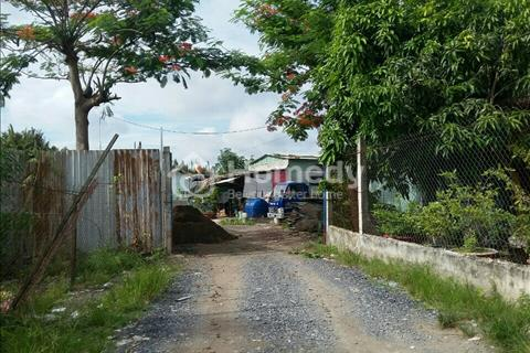 Cần bán 5000m2 đất vườn đường Nguyễn Bình - Nhơn Đức, giá 1.9 triệu/m2