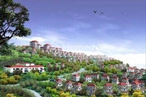 Cần bán đất nền liền kề đồi 368, giá rẻ nhất Hạ Long 12 triệu/m2