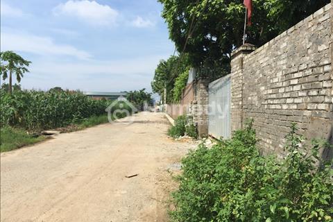 Cần bán 800m đất 50 năm tiện làm nhà xưởng, nhà vườn, kho sát Yên Nghĩa