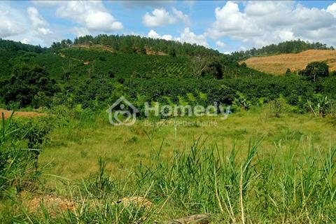 Bán đất tại xã phú hội - huyện Đức Trọng - tỉnh Lâm Đồng, đường xe tải chạy vào tận nơi