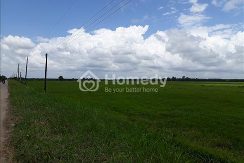 Cần bán mảnh đất vườn tại Mỹ Lộc, Cần Giuộc, Long An - diện tích 1200m2 - giá 850 triệu