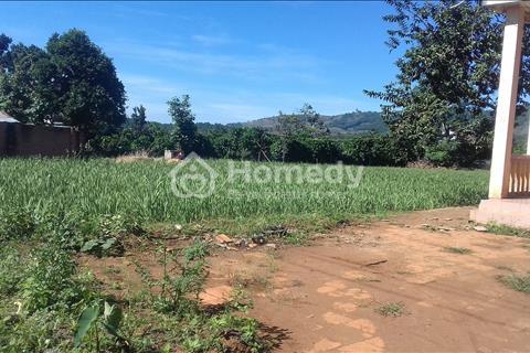 Cần bán gấp 2000m2 đất vườn có 600m2 đất xây dựng tại xã Tà Nung
