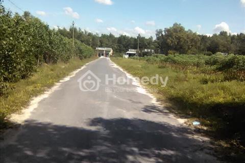 Tôi cần bán lô đất lớn khu vực Tóc Tiên, cách Quốc Lộ 81 100m