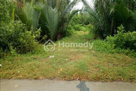 Cần bán đất vườn 942m2, đường Nguyễn Văn Tạo, Hiệp Phước, Nhà Bè, giá 2,3 tỷ