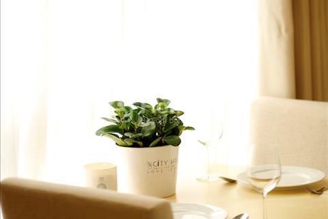 Cho thuê căn hộ dịch vụ City House Apartment, đường Thạch Thị Thanh, 14,7 triệu/tháng, Studio