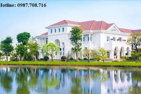 Chính chủ bán lại căn Anh Đào 8 đã hoàn thiện nội thất, Đông Nam, 163,9m2 dự án Vinhomes Riverside