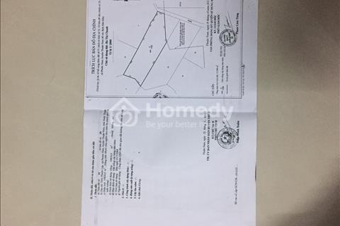 Cần bán đất thuộc xã Phước Nam - huyện Thuận Nam - tỉnh Ninh Thuận
