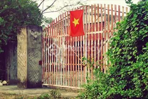 Gấp, bán đất chính chủ khu vực Chương Mỹ, Hà Nội
